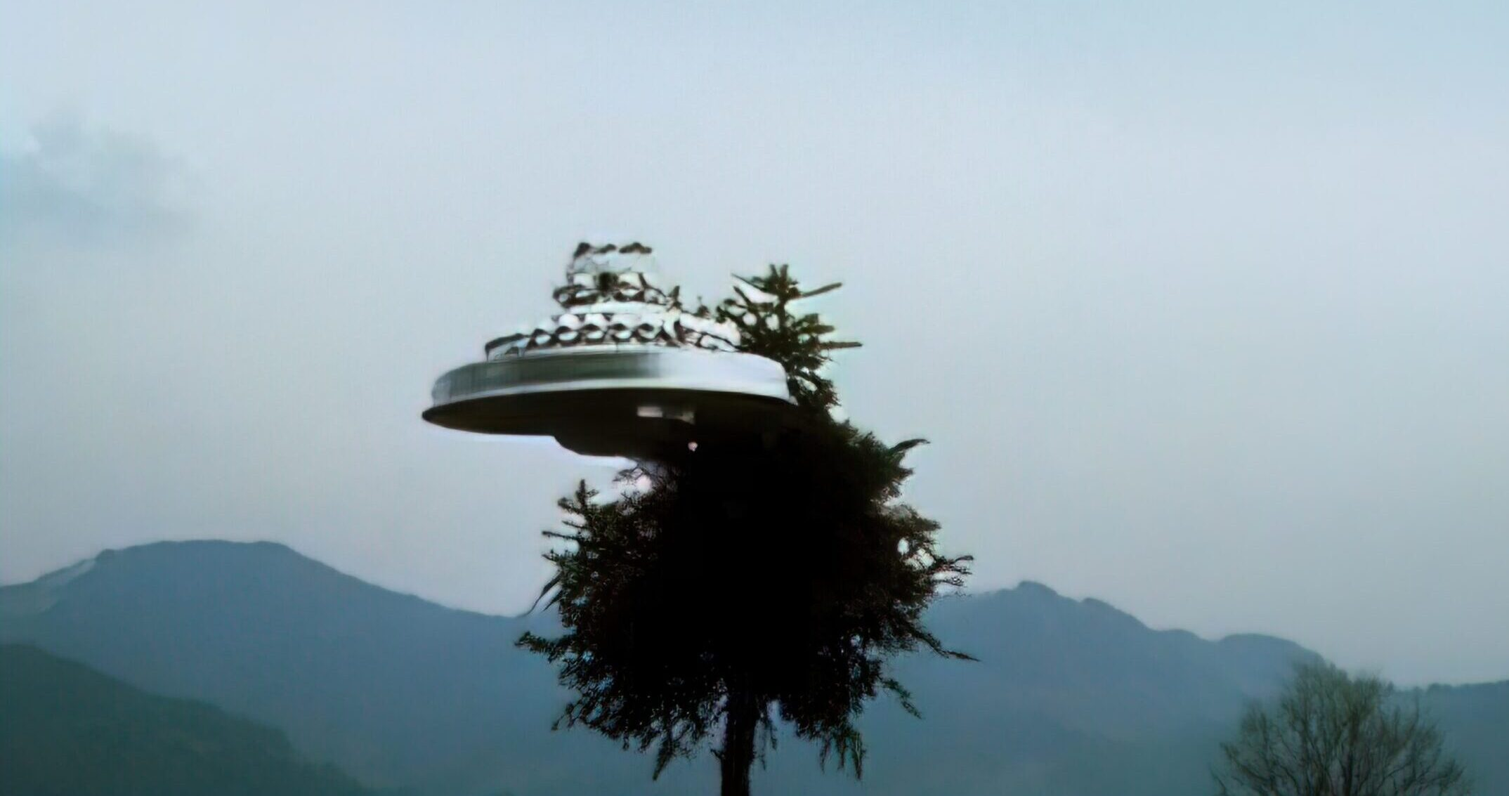 Wedding Cake UFO - Hovering by tree Near Hinwil, 4th April 1981