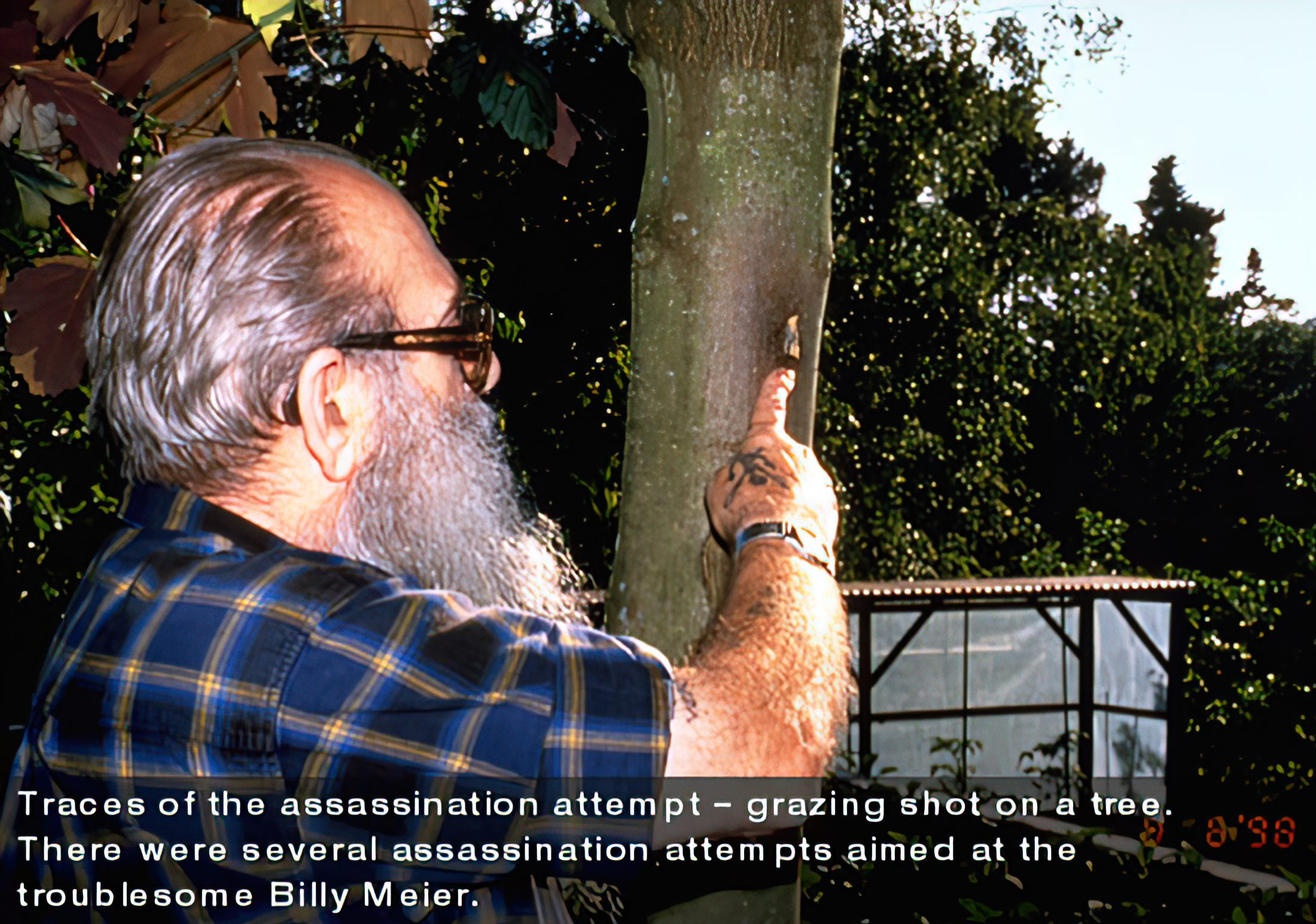 Billy - Showing grazed tree during assassination attempt